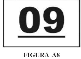 imma13.JPG