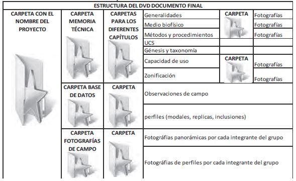Tabla 10. Contenido y estructural del DVD con el documento final