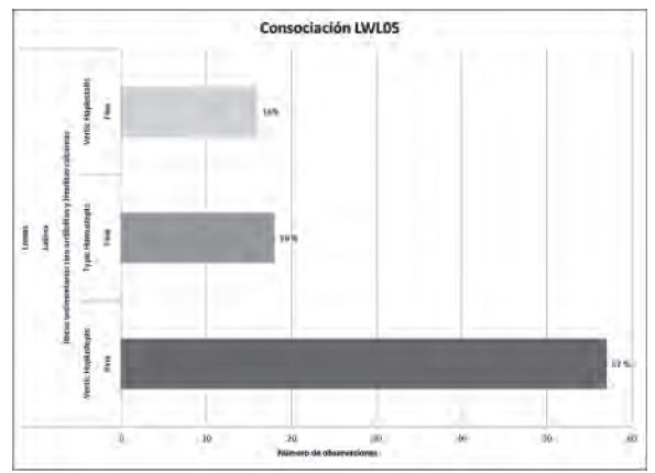 Figura 8. Conformación de la unidad cartográfica de suelos