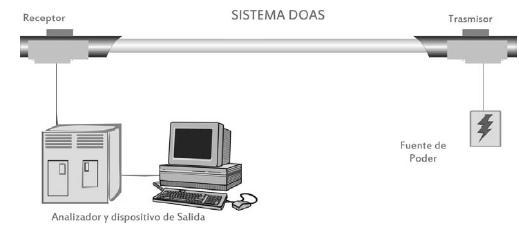 dofig80.JPG