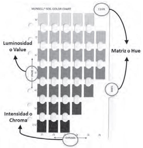 Figura 6 Tabla Munsell (Fuente, IGAC)
