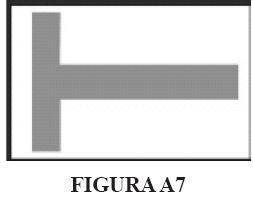 imma12.JPG