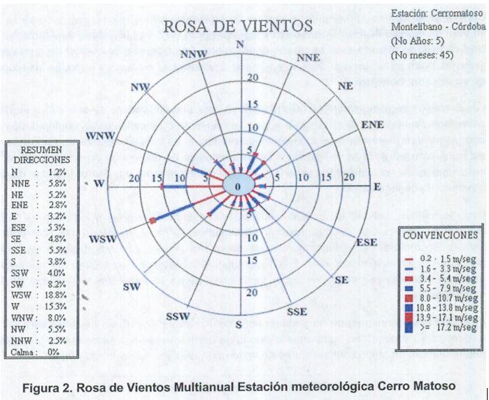 ROSA DE MULTIANUAL
