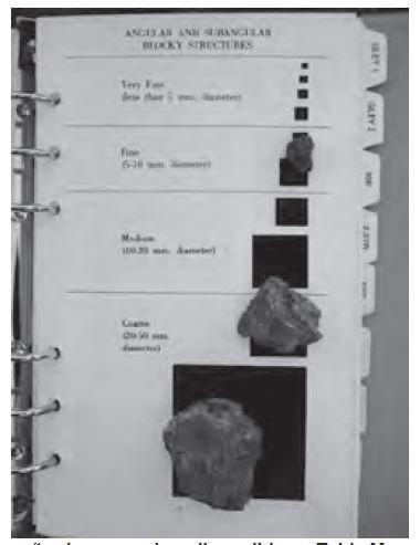 Figura 8 Clase y tamaño de agregados, disponible en Tabla Munsell